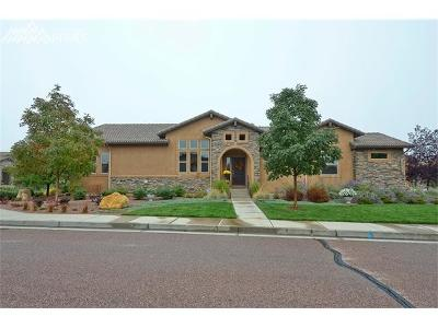 Colorado Springs Single Family Home For Sale: 12940 Penfold Drive