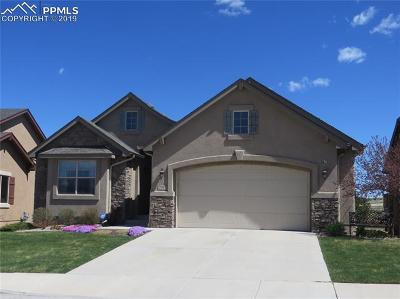 Colorado Springs Single Family Home For Sale: 2917 Sovereign View