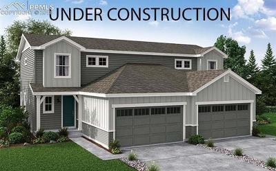 Condo/Townhouse For Sale: 8924 Birch Run Lane