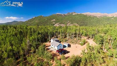 Cripple Creek Single Family Home For Sale: 2749 County 61 Road
