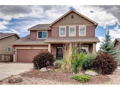 Colorado Springs Single Family Home For Sale: 7835 Irish Drive