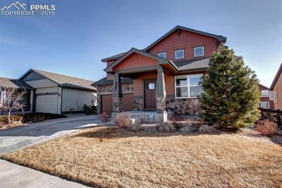 Colorado Springs Single Family Home For Sale: 6983 Mountain Spruce Drive