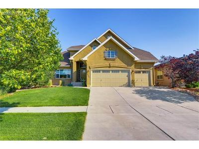 Single Family Home For Sale: 5744 Brave Eagle Drive