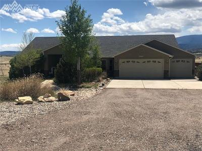 Single Family Home For Sale: 5980 Hart Ranch Drive