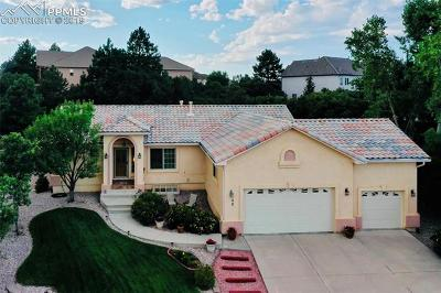 Colorado Springs Single Family Home For Sale: 40 Wuthering Heights