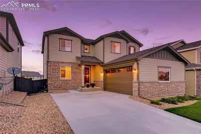Castle Rock Single Family Home For Sale: 4375 McMurdo Court