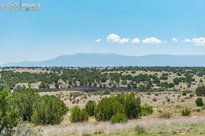Residential Lots & Land For Sale: 00 Nolan