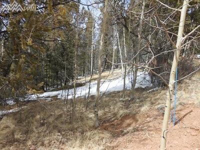 Cripple Creek Residential Lots & Land For Sale: 565 Fairview Drive