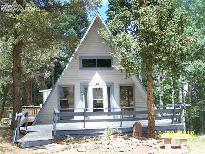 Single Family Home For Sale: 101 Willow Road