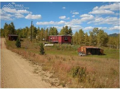 Cripple Creek Single Family Home For Sale: 10655 S Highway 67 Highway
