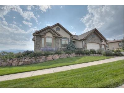 Colorado Springs Single Family Home For Sale: 13932 Windy Oaks Drive