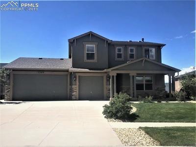 Colorado Springs Single Family Home For Sale: 5249 Gem Lake Court