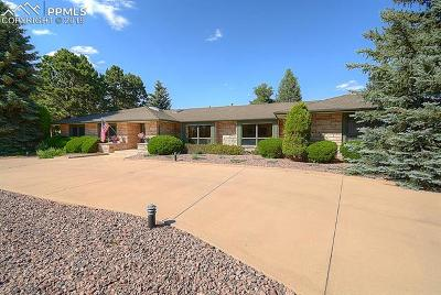 Colorado Springs Single Family Home For Sale: 3463 Hill Circle