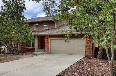 Colorado Springs Single Family Home For Sale: 615 S Grey Eagle Circle