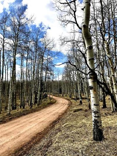 Cripple Creek Residential Lots & Land For Sale: 1395 W County Road