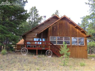 Lake George CO Single Family Home For Sale: $325,000