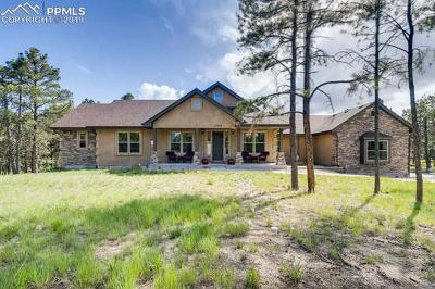 El Paso County Single Family Home For Sale: 15664 Pole Pine Point