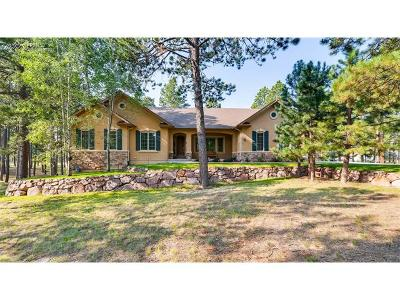 Colorado Springs Single Family Home For Sale: 4781 Secluded Creek Court