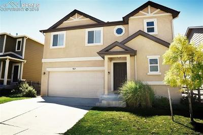 Colorado Springs CO Rental For Rent: $1,900