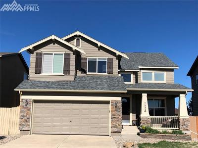 Colorado Springs Single Family Home For Sale: 7934 Hunter Peak Trail