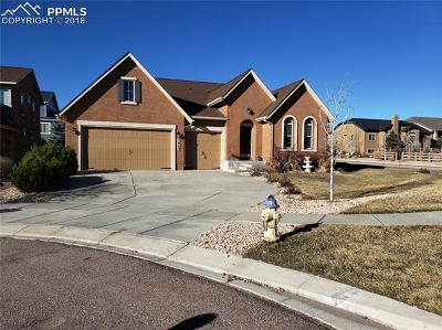 Single Family Home Uc Short Sale - Showing: 5862 Paladin Place