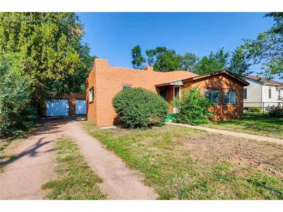 Single Family Home For Sale: 910 S Institute Street