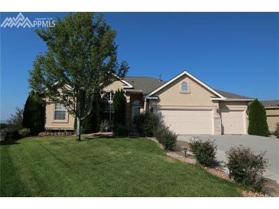 Colorado Springs Single Family Home For Sale: 3638 Spitfire Drive
