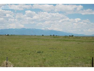 Residential Lots & Land For Sale: S Peyton Highway