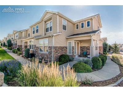 Fountain Multi Family Home For Sale: 8194 Elk River View