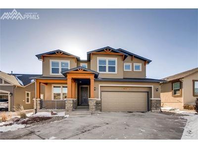 Colorado Springs Single Family Home For Sale: 5221 Kenosha Pass Court