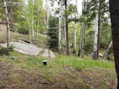 Manitou Springs Residential Lots & Land For Sale: 75 Waterfall Trail
