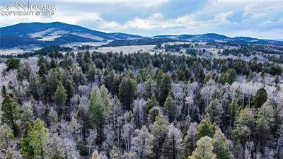 Lake George Residential Lots & Land For Sale: 70 Doe Drive