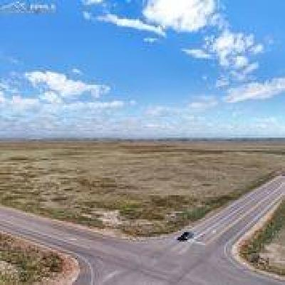 Peyton Residential Lots & Land For Sale: Curtis Road