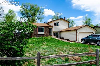 Single Family Home For Sale: 1129 Keith Drive