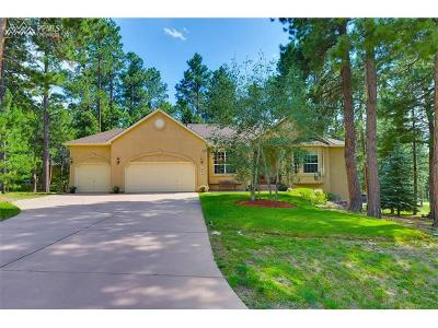 Colorado Springs Single Family Home For Sale: 1505 Shadowtree Court