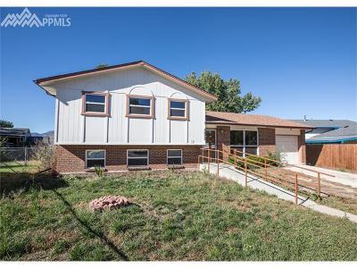 Colorado Springs Single Family Home For Sale: 3935 Astrozon Boulevard