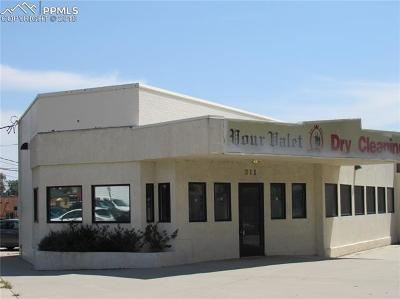 Commercial For Sale: 311 S Nevada Avenue