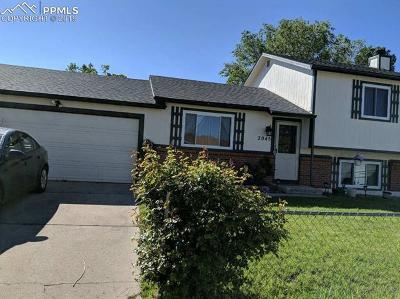 Colorado Springs CO Single Family Home For Sale: $253,990