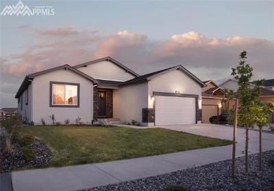 Single Family Home For Sale: 9261 Kathi Creek Drive