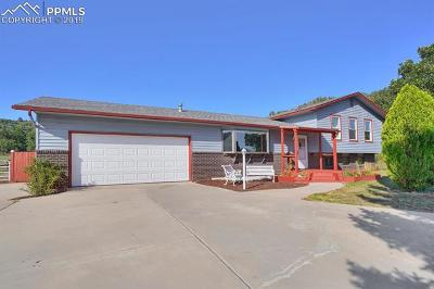 Colorado Springs Single Family Home For Sale: 11780 Valle Verde Drive