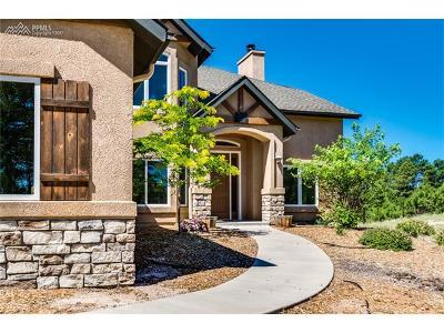 Colorado Springs Single Family Home For Sale: 10770 Huntsman Road