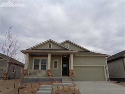 Single Family Home For Sale: 6346 Rowdy Drive