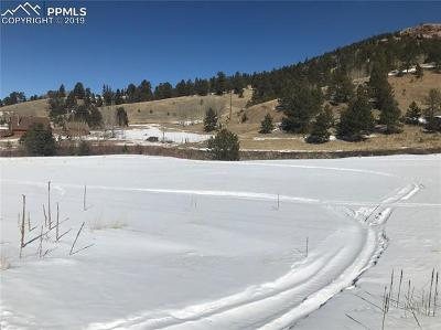 Cripple Creek Residential Lots & Land For Sale: 581 Monarch Drive
