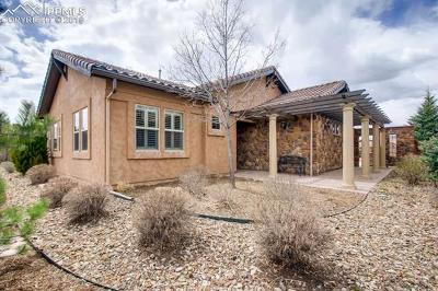 Colorado Springs Condo/Townhouse For Sale: 13135 Thumbprint Court