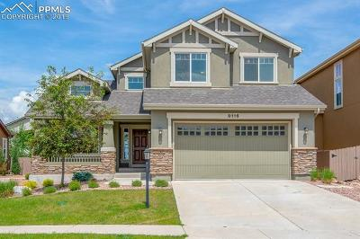 Colorado Springs Single Family Home For Sale: 9116 Lizard Rock Trail