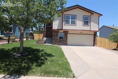 Single Family Home Under Contract - Showing: 7680 Scarborough Drive