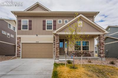Single Family Home For Sale: 7834 Treehouse Terrace