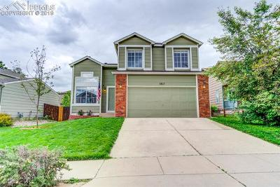 Colorado Springs Single Family Home For Sale: 5817 Fossil Street