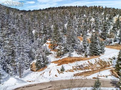 Manitou Springs Residential Lots & Land For Sale: 338 Upper Vista Road