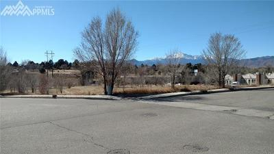 Commercial For Sale: 2175 Hollow Brook Drive